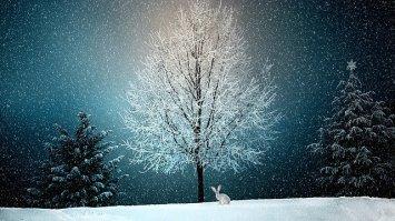 winter-2896970_640